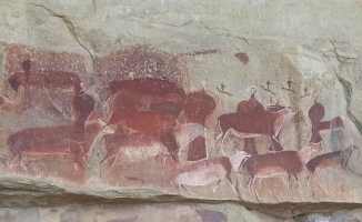 bushman paintings game pass shelter
