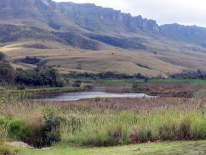 Kamberg Nature Reserve