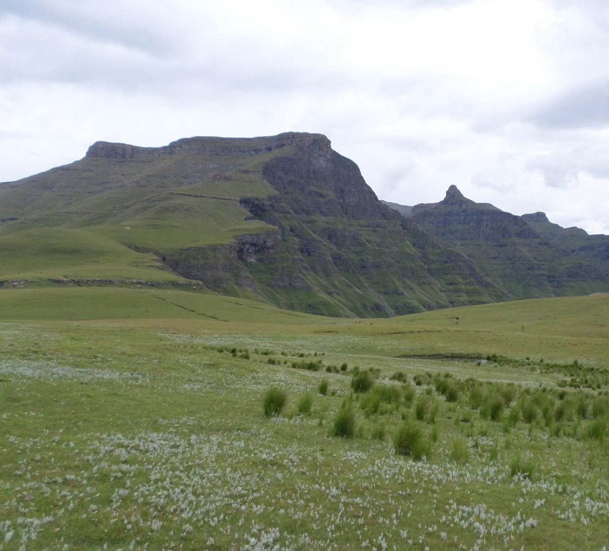Walker's Peak