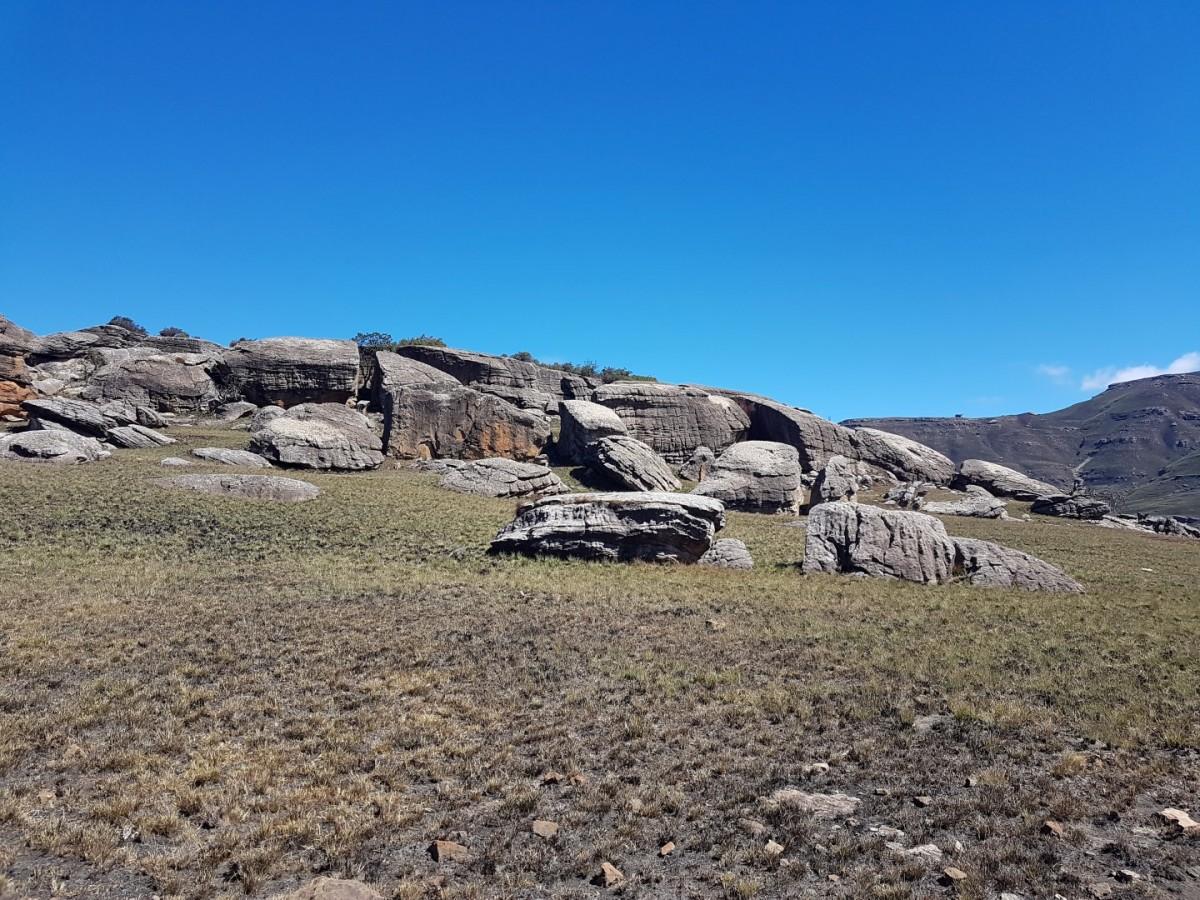 Tortoise Rocks
