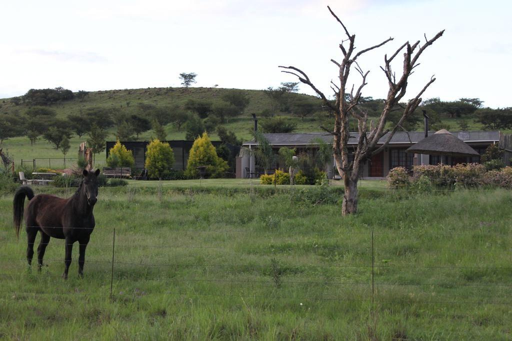 Drakensview Self Catering