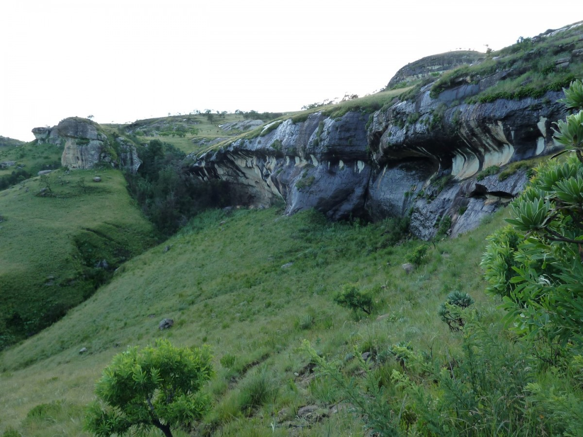 Vaal Rhebok Kop's Cave (Vaalribbokkop)