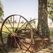Dalmore Guest Farm