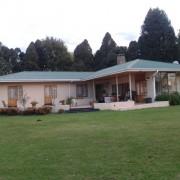 Albizia House B&B