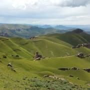 Thamathu Pass