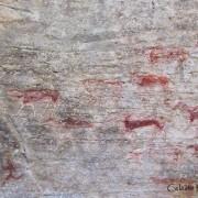 Varnish Shelter (Bushmans River Rock #2)