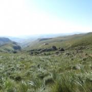 Bannerman Hut Hike
